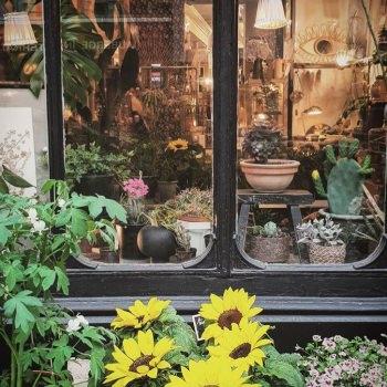Les Fleurs Rue Trousseau